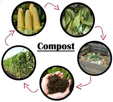 compost-life-cycle