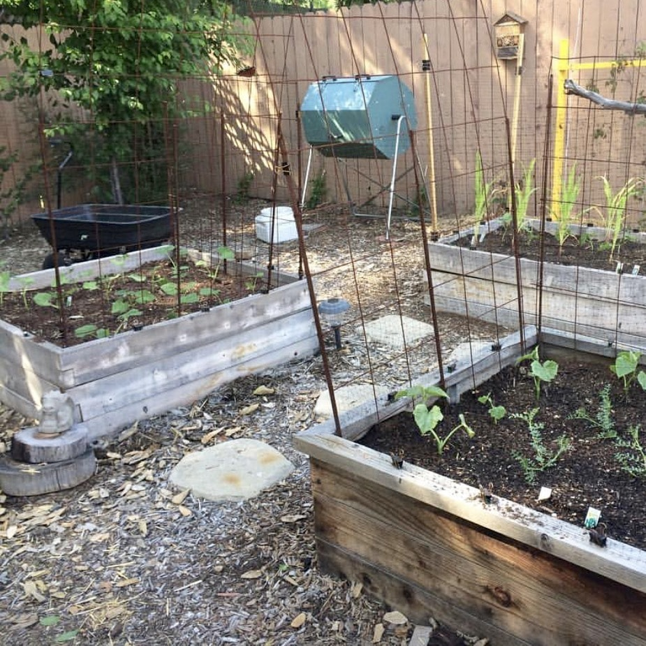compost-from-jora-composters